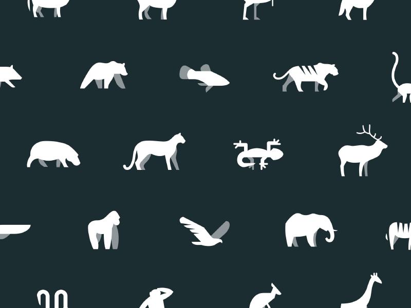 animals in energy supply