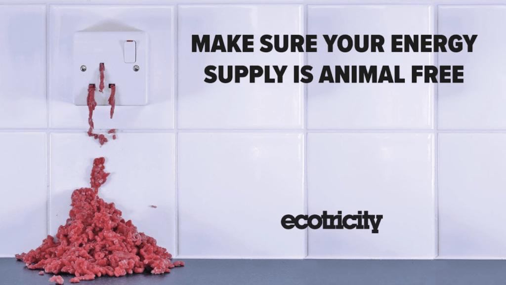 animal free energy supply ecotricity